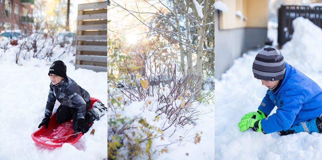 Vinterväder med vinterlek