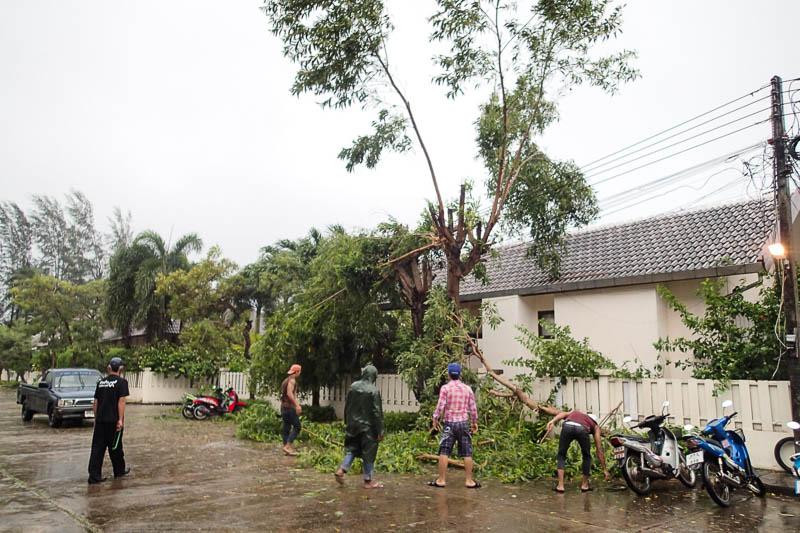 Ett försök att röja nedfallna träd över ledningar när det slutade blåsa för en stund.