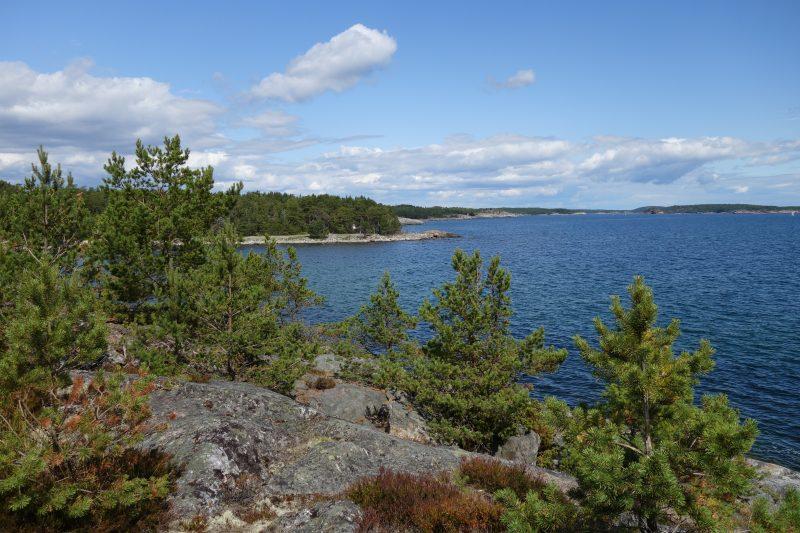 Utsikt över Östersjön.